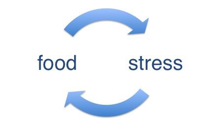 food-stress