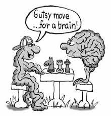 gutsy brain